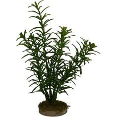 Bush 14 cm