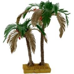 Double bicolor palm 22-15 cm
