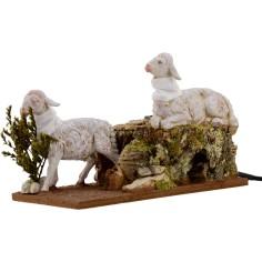 2 Pecore in movimento per...
