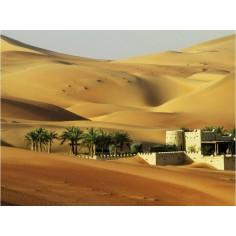 Backdrop with desert landscape 70x50 cm