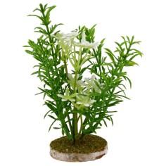 Aghiform bush cm 7,5x14 h