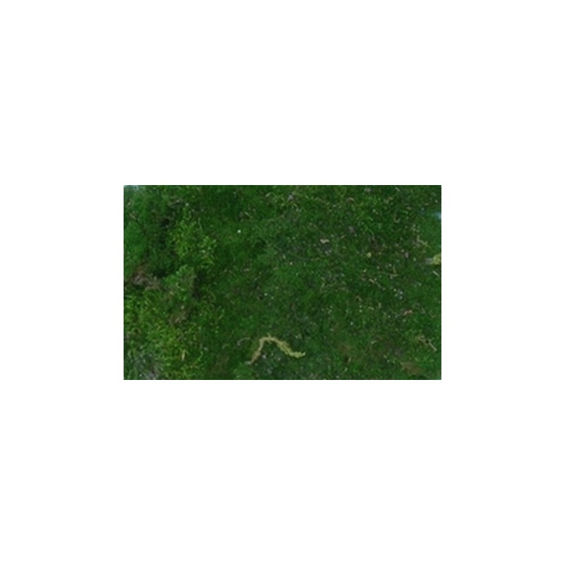 The moss rug natural 200 g - Cribs