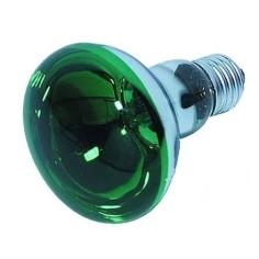 Lampada spot Verde E27-60W Cod. IL08