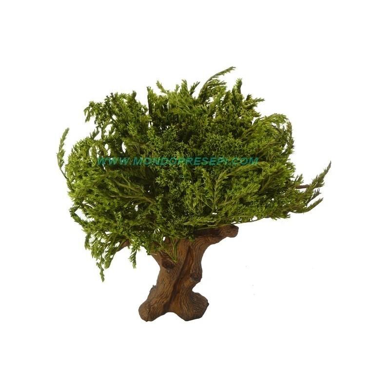 Albero 25-27 cm foglie Verdi Mondo Presepi