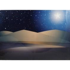 Cielo Stellato fibre ottiche con deserto e stella ef.