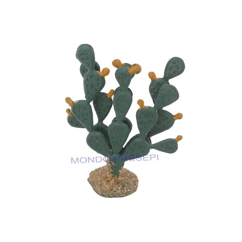 6 cm thick prickly pear - 9682D