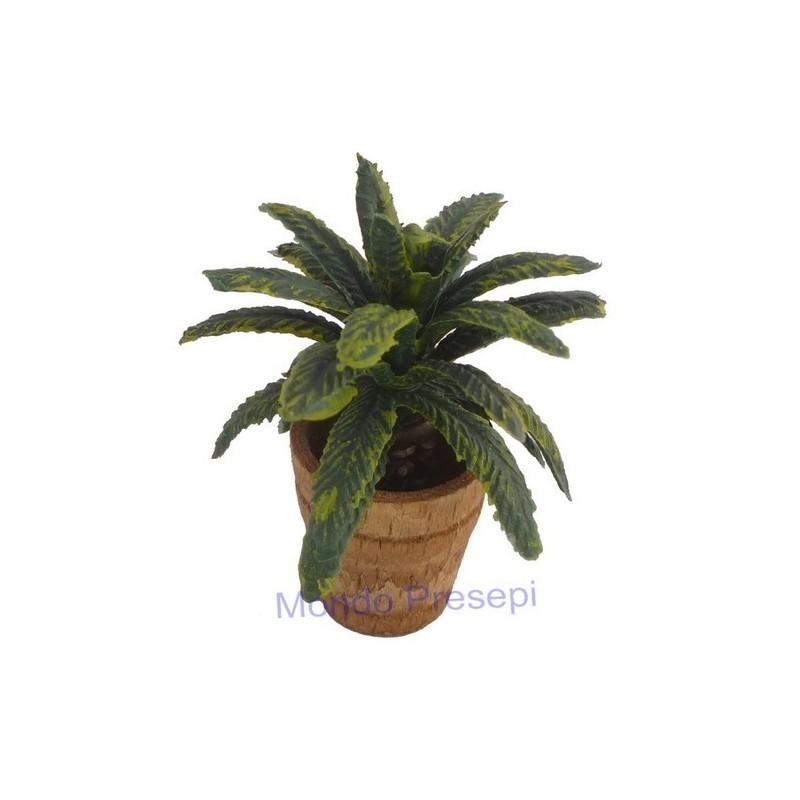 Mondo Presepi Vaso con pianta