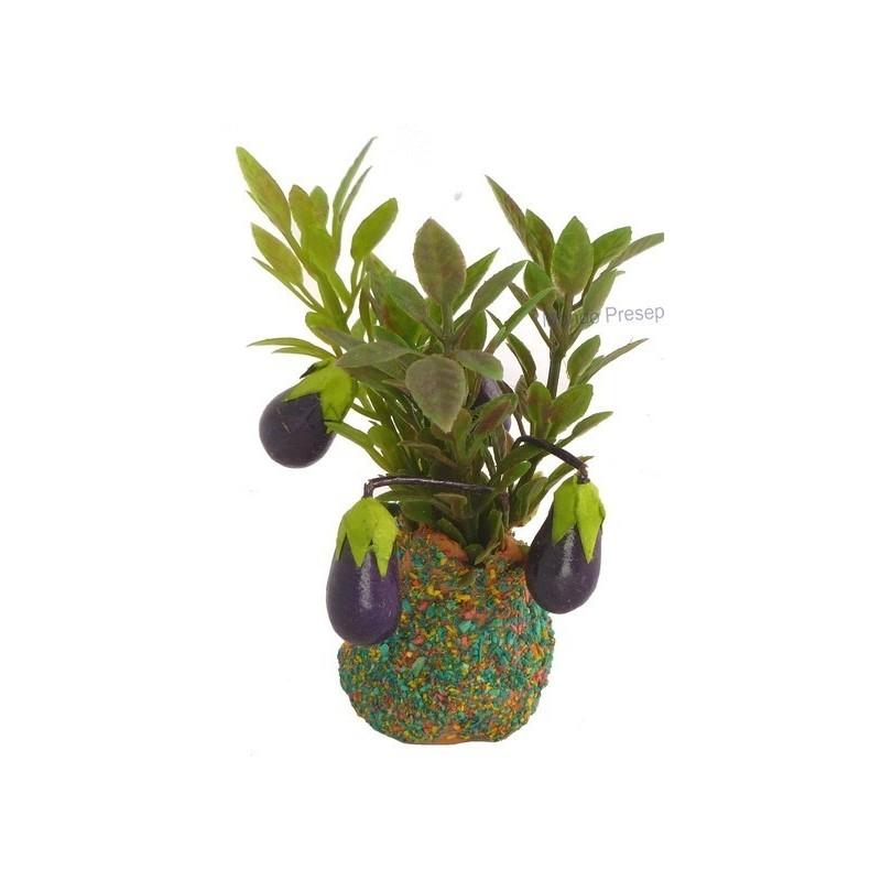 Plant with eggplant