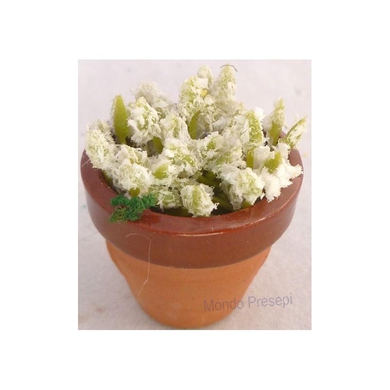 Mondo Presepi Vaso in cotto con fiori