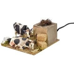 Mucche in movimento che mangiano cm 15x15x7 h