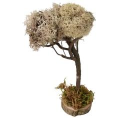 Albero con chioma chiara cm 19 h Mondo Presepi