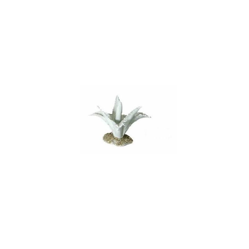 Mondo Presepi Agave piccola cm 3