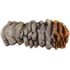 Bench fish 6.5 cm
