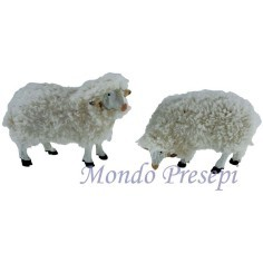Set 2 pecore per statue cm 15-20