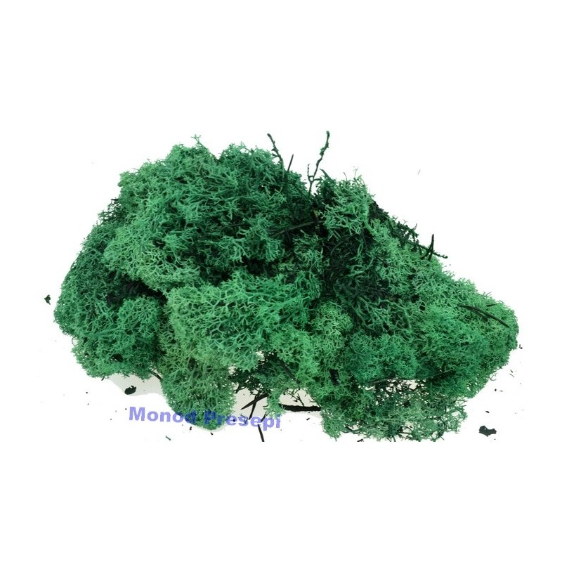 Lichen forest green 50 grams