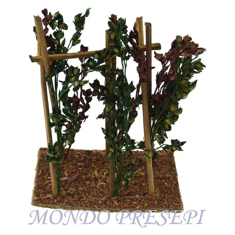 Mondo Presepi Orto con piante