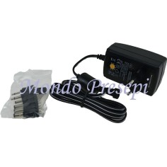 Switching power supply stabilized multi-voltage 9-24V 24W