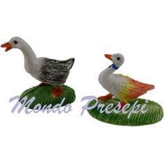 Set 2 colombe