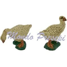 Set 2 geese series Oliver