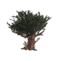 Mondo Presepi Albero foglie verdi h. 18 cm