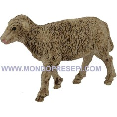 Sheep coated for statues cm 15-20 - head high