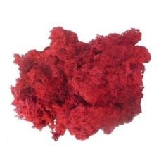 Mondo Presepi Lichene rosso 500 gr